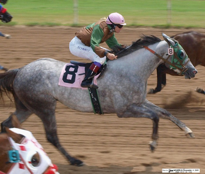 Blue Ribbon Sallisaw >> Other Racing Releases